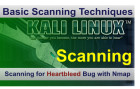 Heartbleed bug Scanning using Nmap on Kali Linux