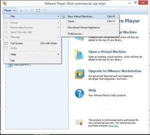 Kali Linux Installation - Create new virtual machine 1