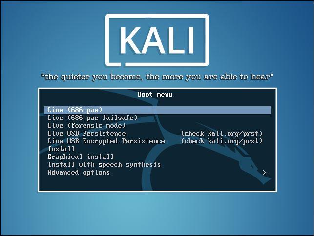 Kali Linux Installation - Installation Menu 1