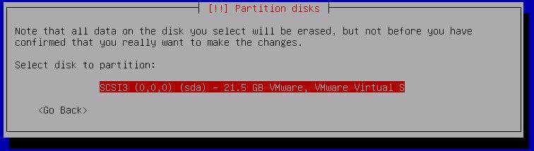 Kali Linux Installation - Partition disks 12