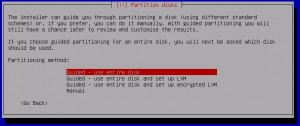 Kali Linux Installation - partitioning method 11