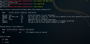 Metasploit set exploit options command 8-1