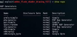 Metasploit show nops command 12