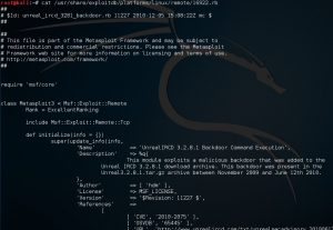 searchsploit exploit - 9