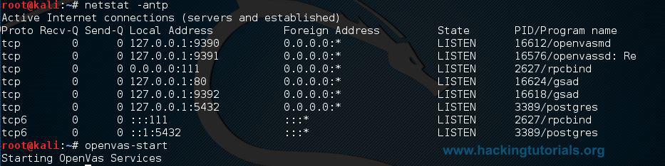 OpenVAS setup netstat -antp