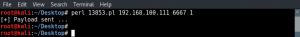 execute-unreal-ircd-exploit
