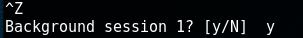 exploiting-druby-rmi-server-1-8-background-session