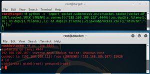 Python reverse shell