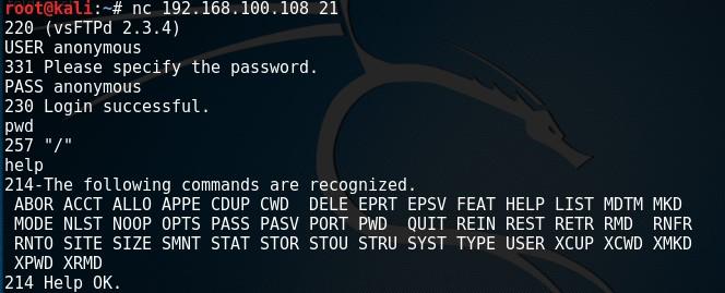 netcat-basics-raw-connect-2