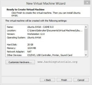 Caine VM Hardware settings