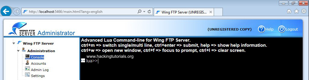 Wing FTP server lua command line